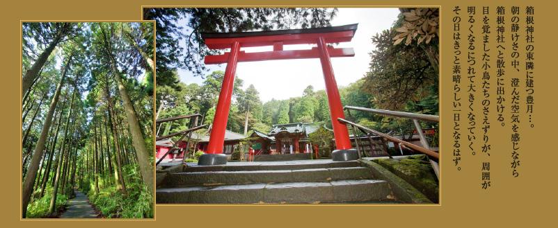 箱根神社の東隣に建つ豊月